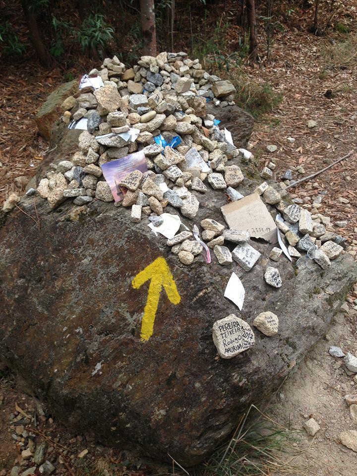 El Camino De Santiago Pensamientos De Peregrinos